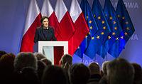 Rada Krajowa Platformy Obywatelskiej RP, Warszawa (6.02.2015) (16269547900)