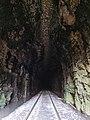 Railroad tunnel 4.jpg