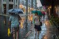 Rainy Vieux-Québec (14767369335).jpg