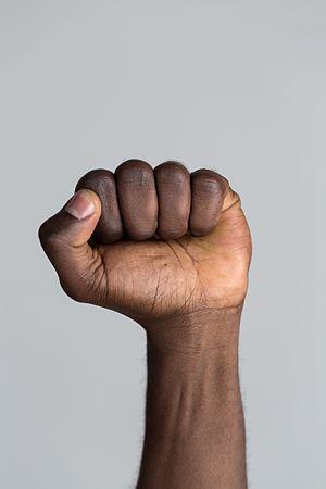 Fist - A raised, closed fist