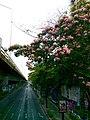 Rama 4,Pathum Wan, Pathum Wan, Bangkok, Thái Lan - panoramio.jpg