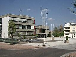 Rathausplatz tamm