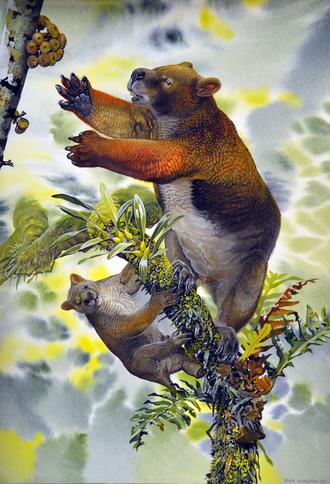 Ilariidae - Nimbadon lavarackorum mother and juvenile (reconstruction)