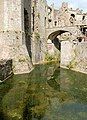 Reflections in the moat, Raglan Castle - geograph.org.uk - 1531725.jpg