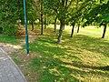 Remscheider Straße Pirna (44490363092).jpg