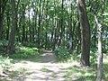 Riga, hřbitov v blízkosti stanice Tornakalns.jpg