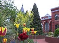 Ripley Garden in April (17427532280).jpg