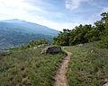 Riserva naturale Tsatelet - trail.jpg
