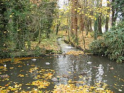 River-Ver-St-Albans-20031112-001