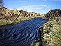 River Halladale - geograph.org.uk - 166424.jpg