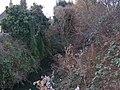River Rom from Cedar Road - geograph.org.uk - 1114492.jpg