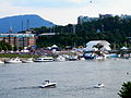 Riverbend Festival TN River.JPG