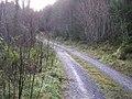 Road at Carrickrevagh - geograph.org.uk - 1118229.jpg