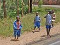 Road between Ruhengeri and Kigali - Flickr - Dave Proffer.jpg