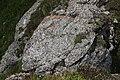 Rock at La Para (43519003754).jpg