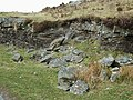 Rock exposure north-west of Ffarmers, Carmarthenshire - geograph.org.uk - 1217331.jpg