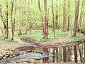 Rodenbeker Quellental 8.jpg