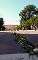 Roseveien til Slottet.jpg