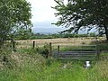 Rough grazing east of Penuwch, Ceredigion - geograph.org.uk - 917549.jpg