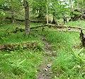 Roughlee Booth, UK - panoramio (9).jpg