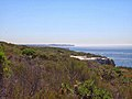 Royal National Park Coast Track - panoramio (4).jpg