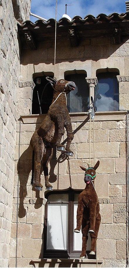 Midget donkey