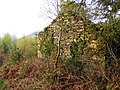 Ruined cottage in Coed y Celyn - geograph.org.uk - 1376114.jpg