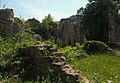 Ruines du château du Morimont.jpg