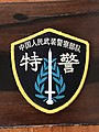 SPU shoulder patch.jpg