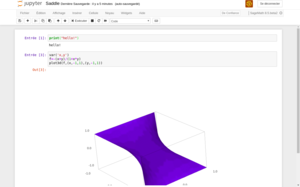 Sagemath document (Jupyter Notebook) inside a web browser