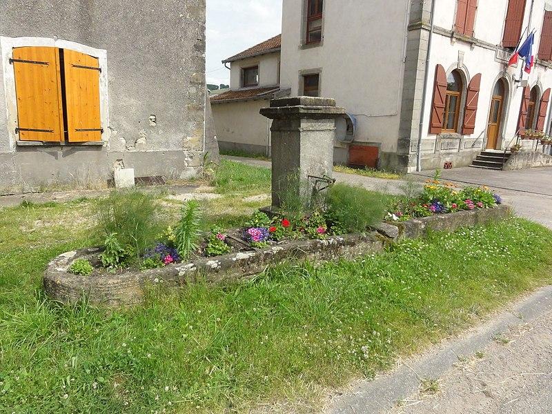 Saint-Boingt (M-et-M) fontaine
