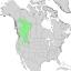 Salix prolixa range map 1.png