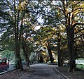 Sant Tegai, Llyndygai, St Tegai Church, Llandygai, Gwynedd 01.jpg