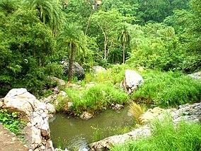 Sariska Tiger Reserve, Alwar.jpg