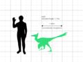 Saurornithoides mongoliensis size comparison.png