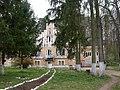 Savadisla Castelul (1).JPG