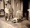 Schlachtung einer Kuh Frankreich 1940.jpg