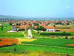 Selo Belotinac.jpg