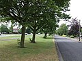 Service Road, Bedgrove - geograph.org.uk - 197571.jpg