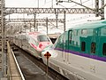 Shinkansen E6 and H5 at Omiya station 20160328 3285091 158259595.jpg
