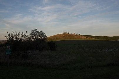 Siegendorfer Pußta und Heide CF9A1759.jpg