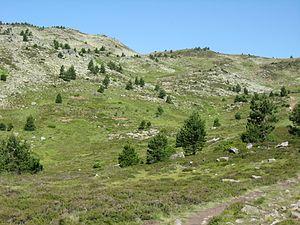 Sierra de Urbión en Soria.JPG