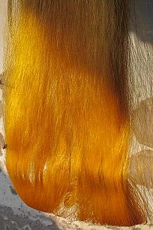 dcf65e3904 Rajshahi silk fibers, Rajshahi.