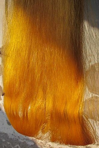 Textile arts of Bangladesh - Rajshahi silk
