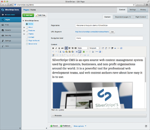 SilverStripe administrator interface version 3.1
