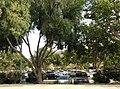 Simi Valley, CA, USA - panoramio (64).jpg
