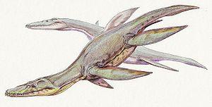 Simolestes - Restoration of S. vorax