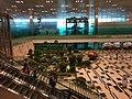 Singapore Changi Airport 5 2017-08-22.jpg