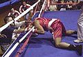 SingletonBox-knockout.jpg