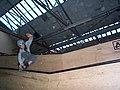 Skating SG2.jpg